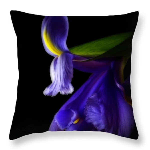 Forgotten Dreams Throw Pillow by Inspired Nature Photography By Shelley Myke