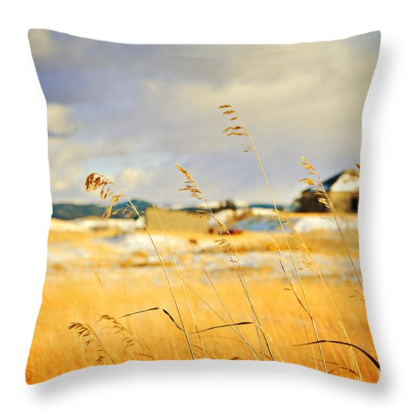 Forgotten Farmhouse Throw Pillow by Theresa Tahara
