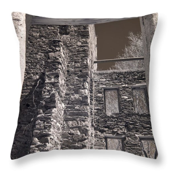 Forgotten Throw Pillow by Joann Vitali