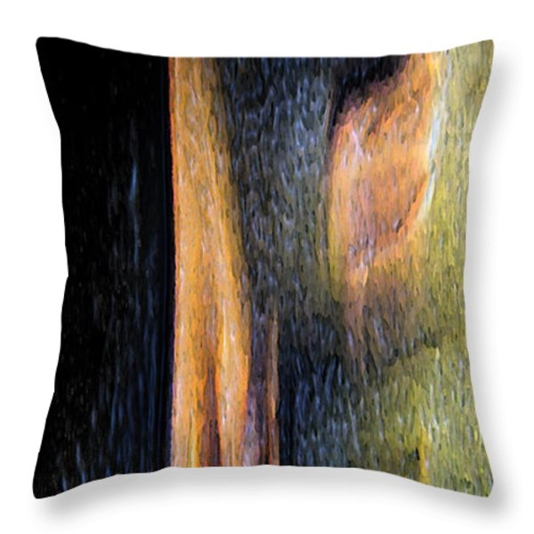 Form And Shadow Throw Pillow by Murray Bloom