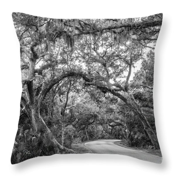 Fort Clinch Live Oaks Throw Pillow by Dawna  Moore Photography