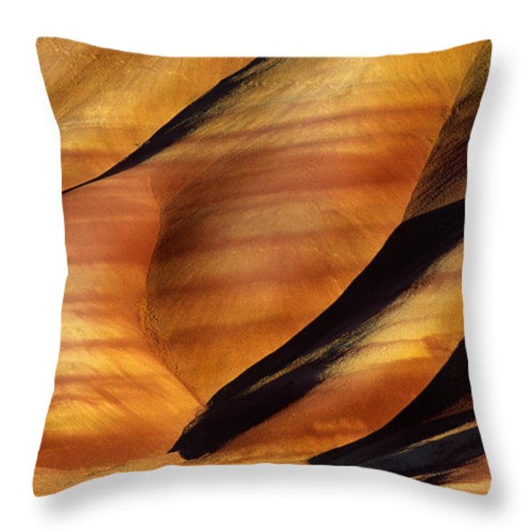 Fossilscape Throw Pillow by Inge Johnsson