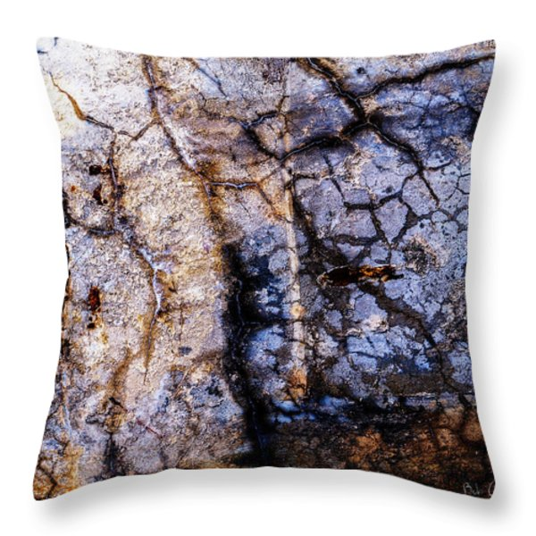 Foundation One Throw Pillow by Bob Orsillo