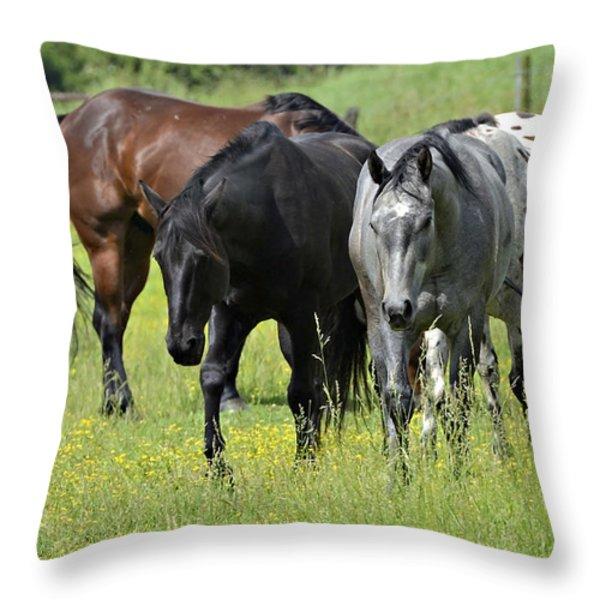 Four Horses Throw Pillow by Susan Leggett