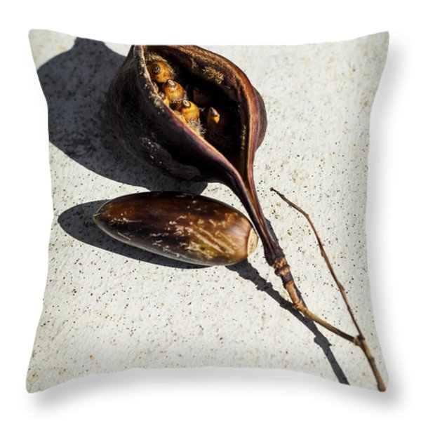 Four Seeds In A Pod Throw Pillow by Camille Lopez