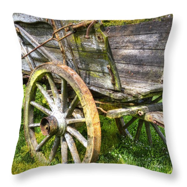 Four Wheels But No Horse Throw Pillow by Heiko Koehrer-Wagner