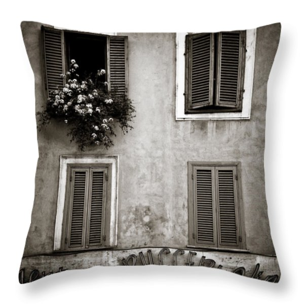 Four Windows Throw Pillow by Dave Bowman