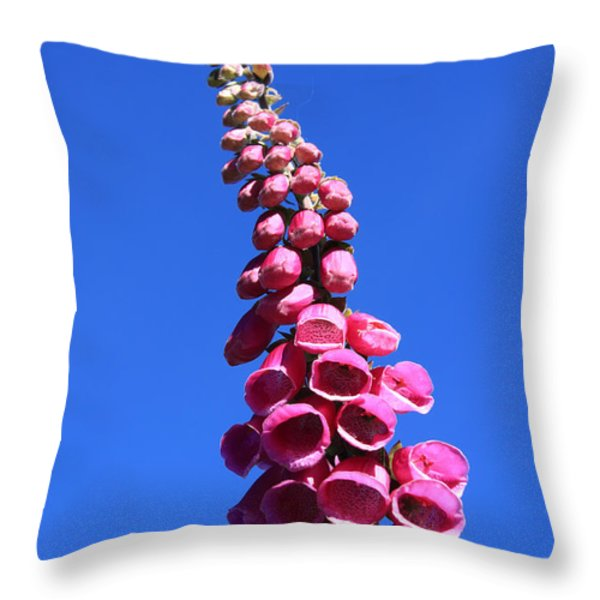Foxglove  Throw Pillow by Aidan Moran