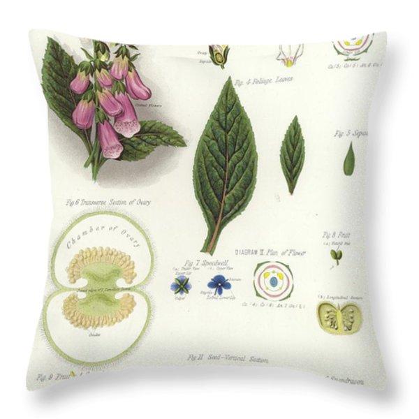 Foxglove Throw Pillow by English School