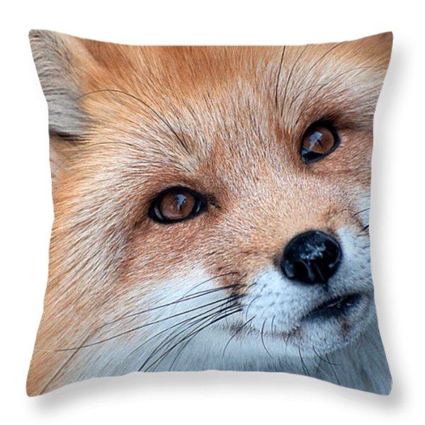 Foxy Lady Throw Pillow by Bianca Nadeau