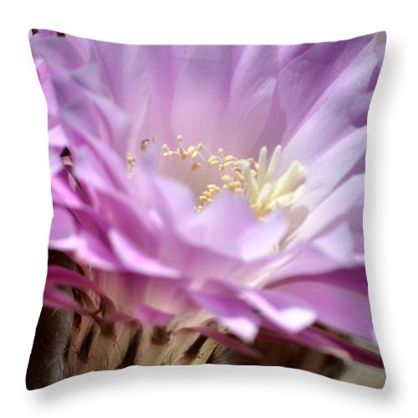 Fragile Beauty Throw Pillow by Deb Halloran