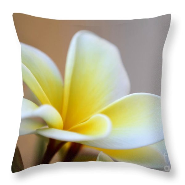 Fragrant Frangipani Flower Throw Pillow by Sabrina L Ryan