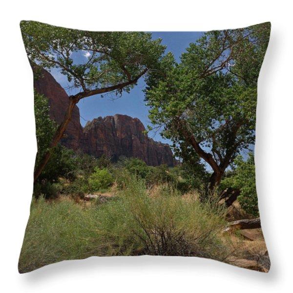 Framed By Foliage Throw Pillow by JP  McKim