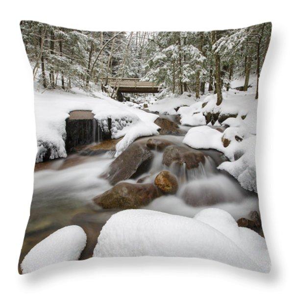 Franconia Notch State Park - White Mountains New Hampshire Usa - Flume Gorge Throw Pillow by Erin Paul Donovan