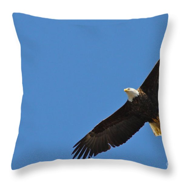 Freedom Throw Pillow by Rick  Monyahan