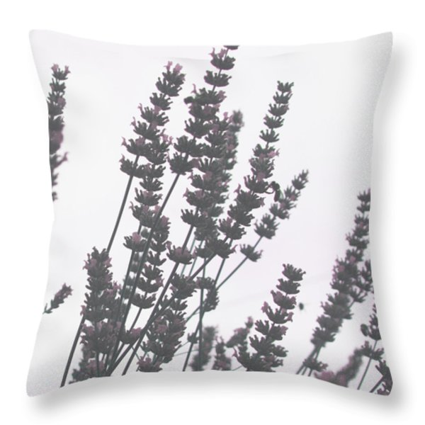 French Lavender Throw Pillow by Nomad Art And  Design