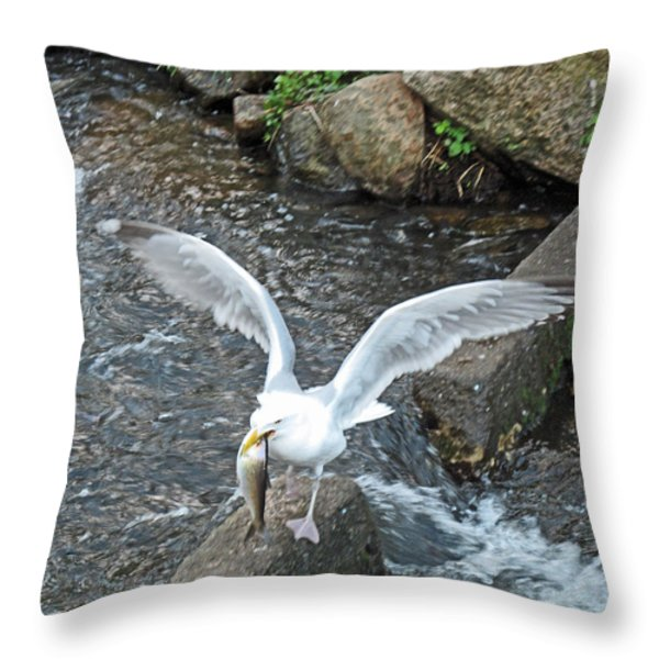 Fresh Catch Of The Day Throw Pillow by Barbara McDevitt