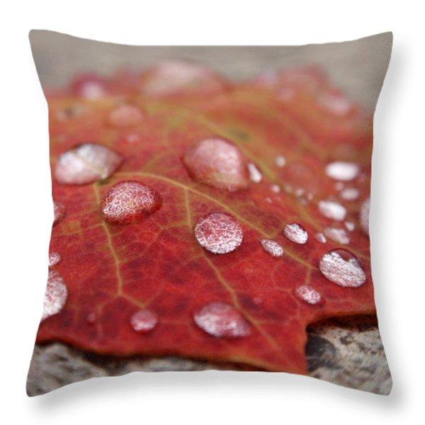 Fresh Drops Throw Pillow by Christina Rollo
