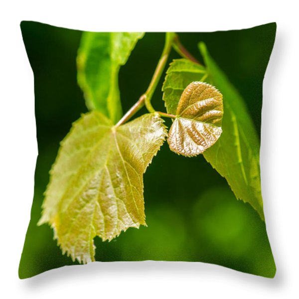 Fresh - Featured 3 Throw Pillow by Alexander Senin