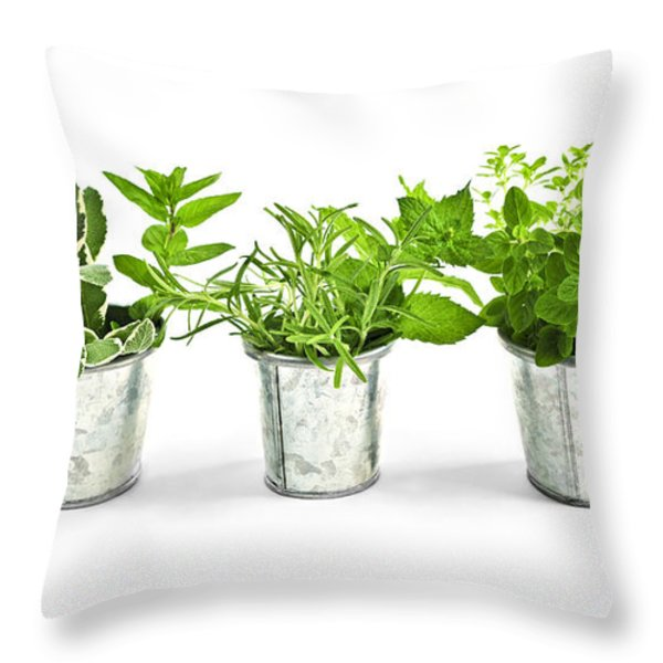 Fresh herbs in pots Throw Pillow by Elena Elisseeva