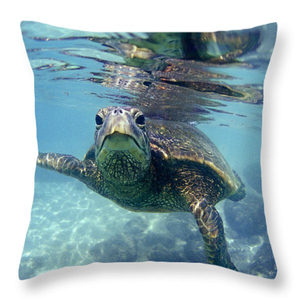 friendly Hawaiian sea turtle  Throw Pillow by Sean Davey