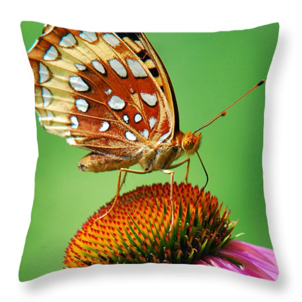 Fritillary Butterfly Throw Pillow by Christina Rollo