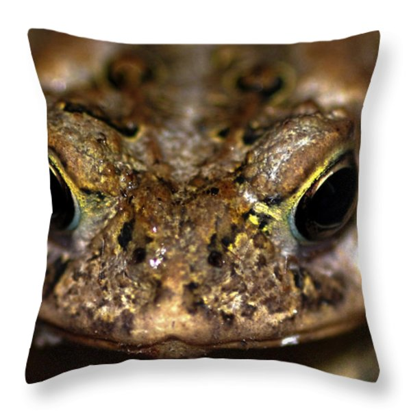 Frog 2 Throw Pillow by Optical Playground By MP Ray