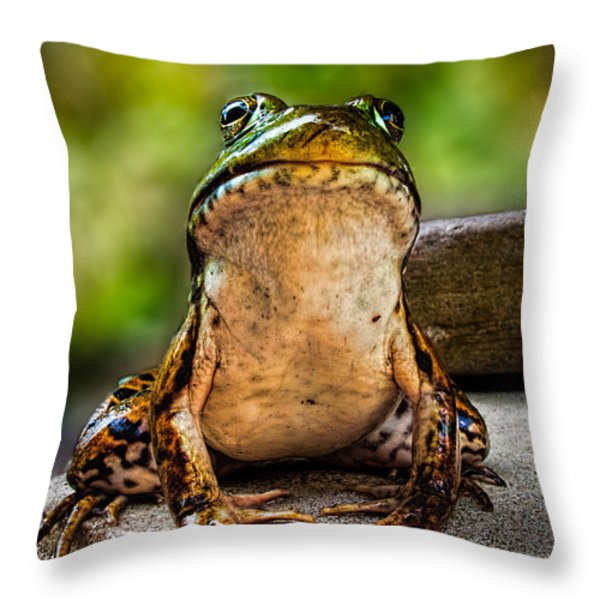 Frog Prince or so he thinks Throw Pillow by Bob Orsillo
