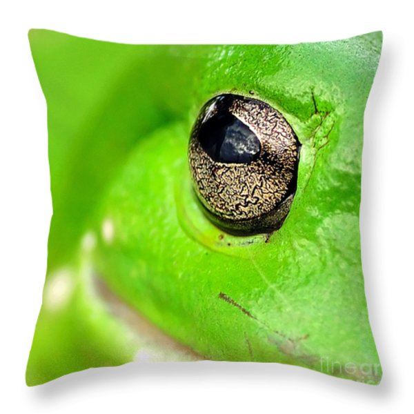 Frog's Eye Throw Pillow by Kaye Menner