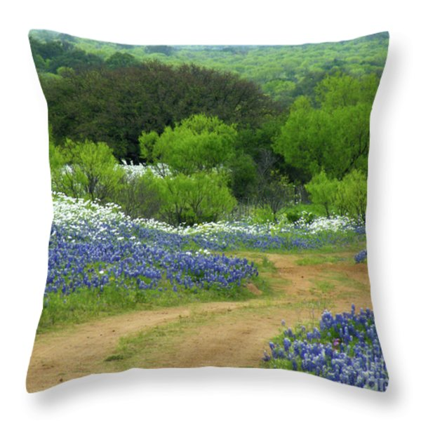From Here To There Throw Pillow by Joe Jake Pratt
