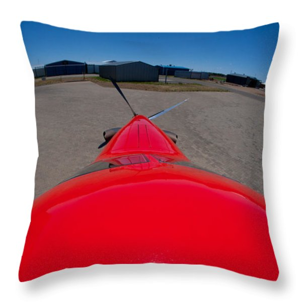 From The Top My Fiend Throw Pillow by Paul Job
