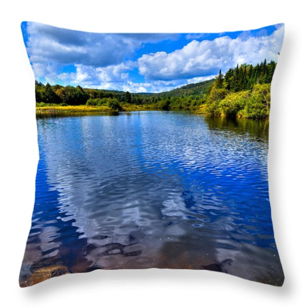 From under the Green Bridge Throw Pillow by David Patterson