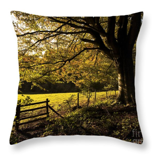 From Woods To Fields Throw Pillow by Anne Gilbert