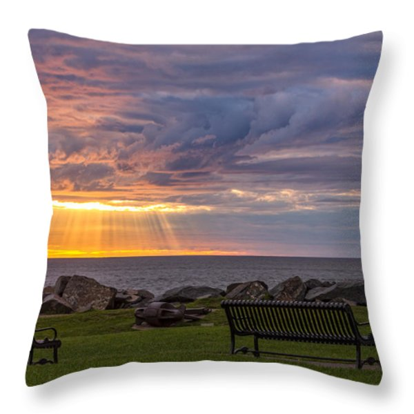 Front Row Seats Throw Pillow by Mary Amerman