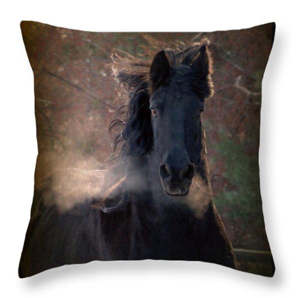 Frost Throw Pillow by Fran J Scott