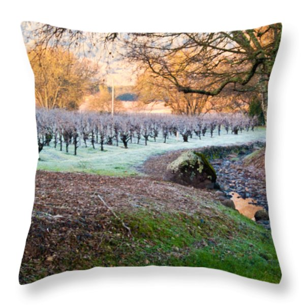Frost In the Valley Throw Pillow by Bill Gallagher
