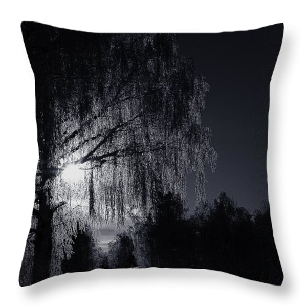 Frost Night Throw Pillow by Erik Brede
