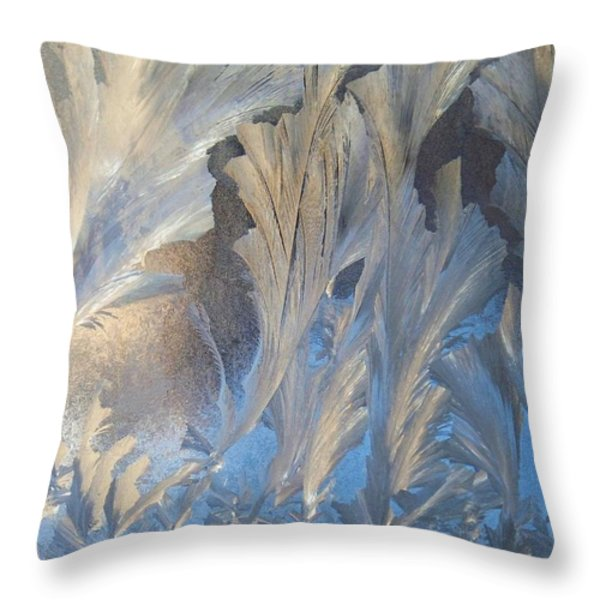 Frost On The Window Pane Throw Pillow by Joy Nichols