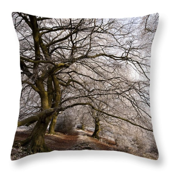 Frosted Path Throw Pillow by Anne Gilbert