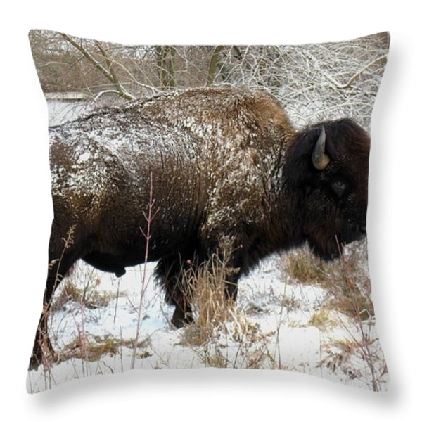 Frosted Woolly Throw Pillow by David Dunham
