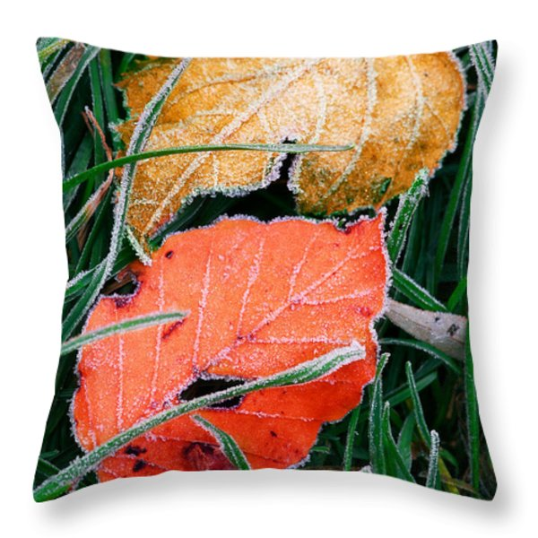 Frosty Leaves Throw Pillow by Elena Elisseeva