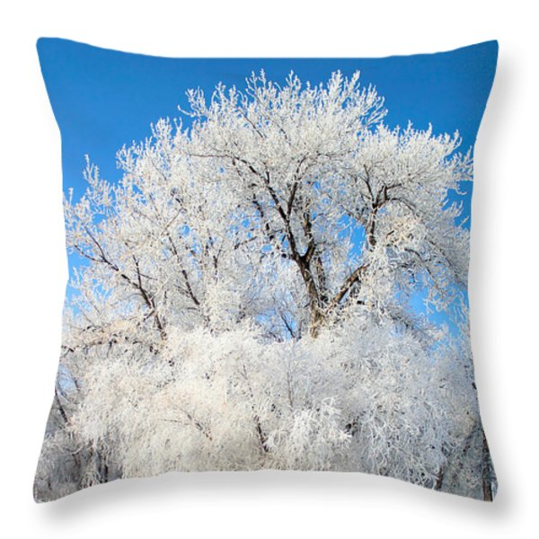 Frosty Morning Throw Pillow by Shane Bechler