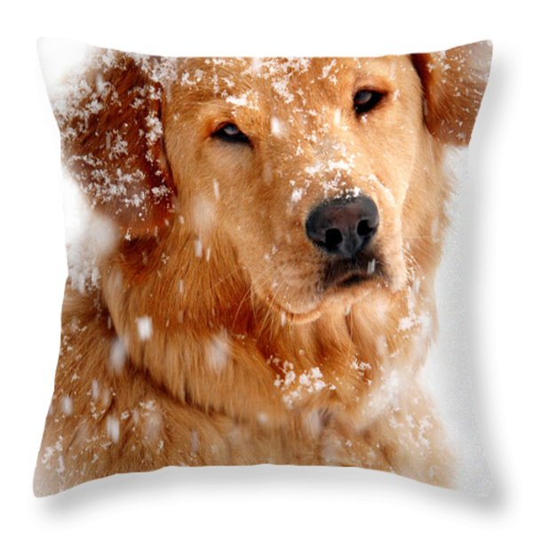 Frosty Mug Throw Pillow by Christina Rollo