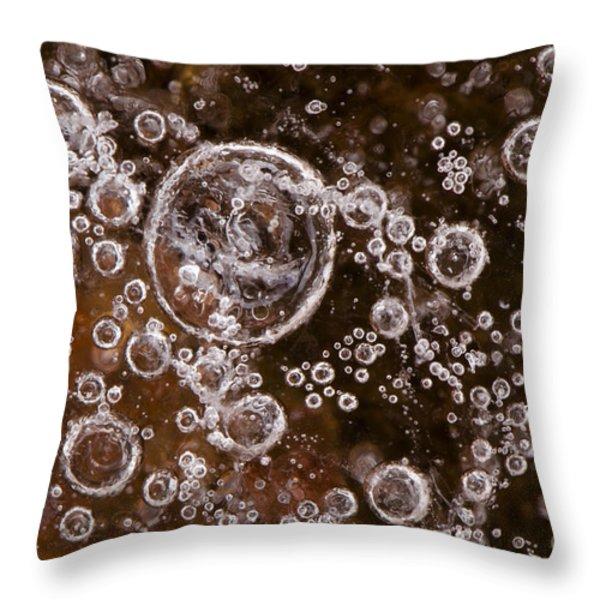 Frozen Bubbles Throw Pillow by Anne Gilbert