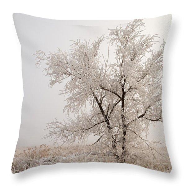 Frozen Ground Throw Pillow by Chad Dutson