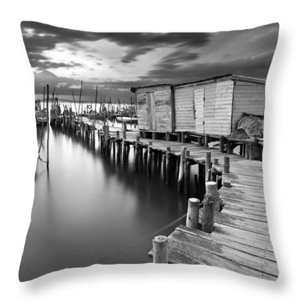 Frozen melody Throw Pillow by Jorge Maia