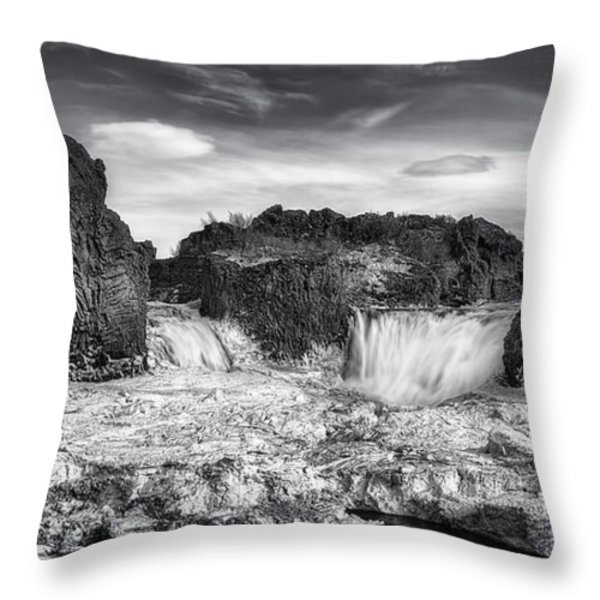 Frozen Splendor Throw Pillow by Evelina Kremsdorf