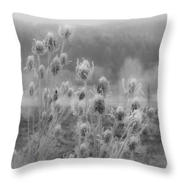 Frozen Teasel Throw Pillow by Jean Noren