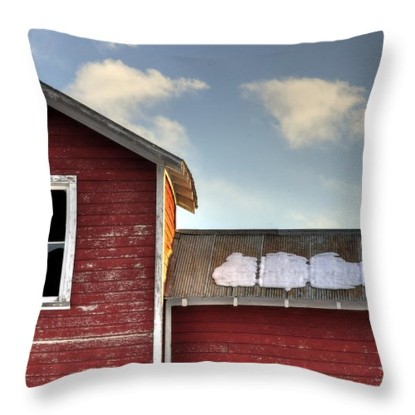 Ft Collins Barn 13493 Throw Pillow by Jerry Sodorff