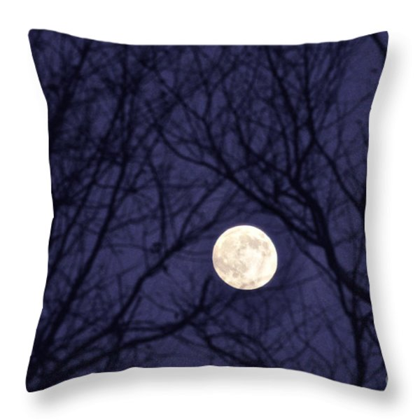 Full Moon Bare Branches Throw Pillow by Thomas R Fletcher